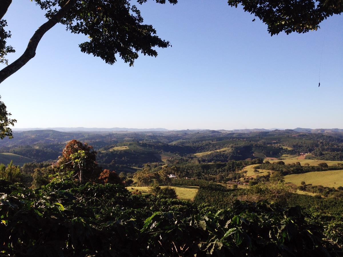 Vista da fazenda de café