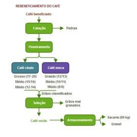 selecaograos_infografico2